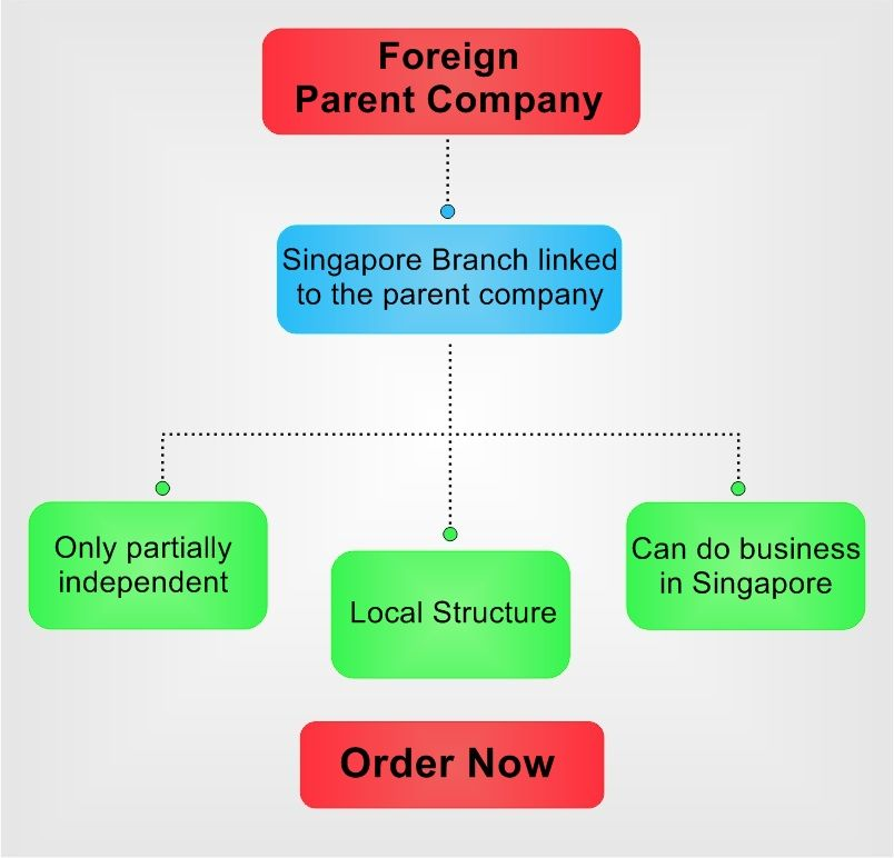 branch of foreign company